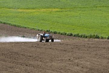 Application de pesticides pour le contrôle chimique des nématodes dans un champ planté de tournesols. Photo : Zeynel Cebeci.